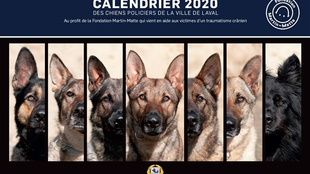 Achat Calendrier 2020.Le Calendrier Des Maitres Chiens 2020 Pour La Bonne Cause